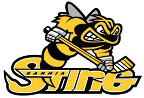 Logo for Sarnia Sting (OHL)