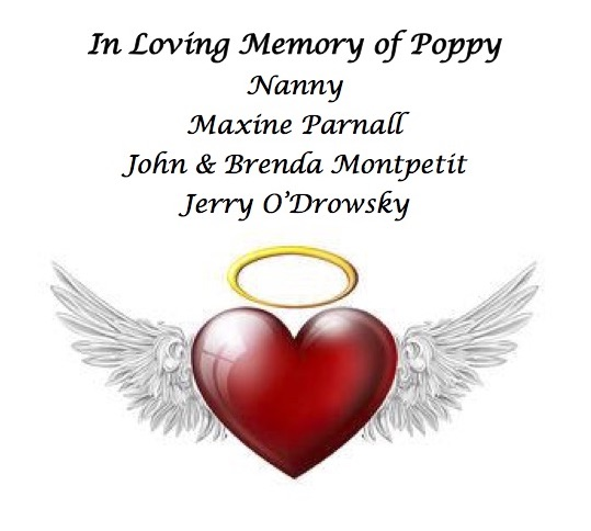 Family & Friends of Mason Goldie- In Loving Memory of Poppy