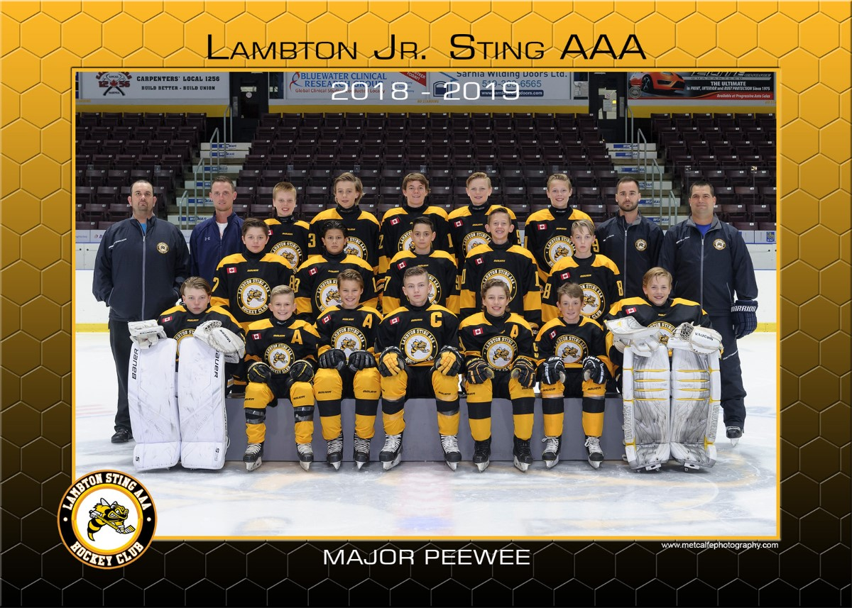 Major_peewee_2018-19.jpg